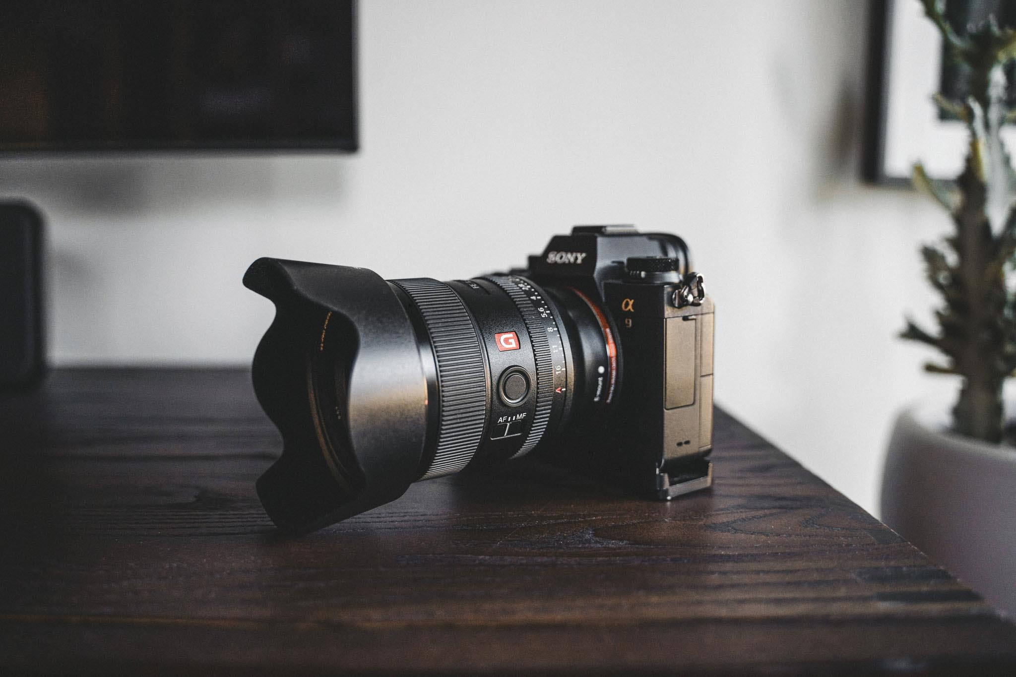 Sony 24mm GM FE Review